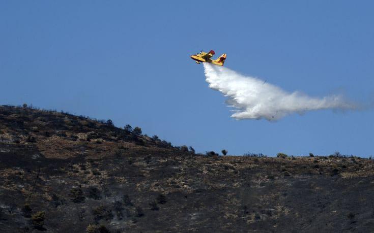 Βόλος: Μεγάλη φωτιά μεταξύ Διμηνίου και Σέσκλου